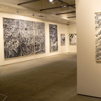 Exposition Humbert - Musée des Beaux-Arts, Quimper. 2007. Photo J. Humbert